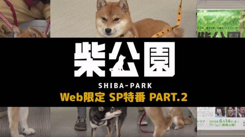 ドラマ「柴公園」Web限定SP特番(PART2)