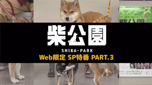 ドラマ「柴公園」Web限定SP特番(PART3)